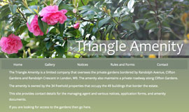 Triangle Amenity